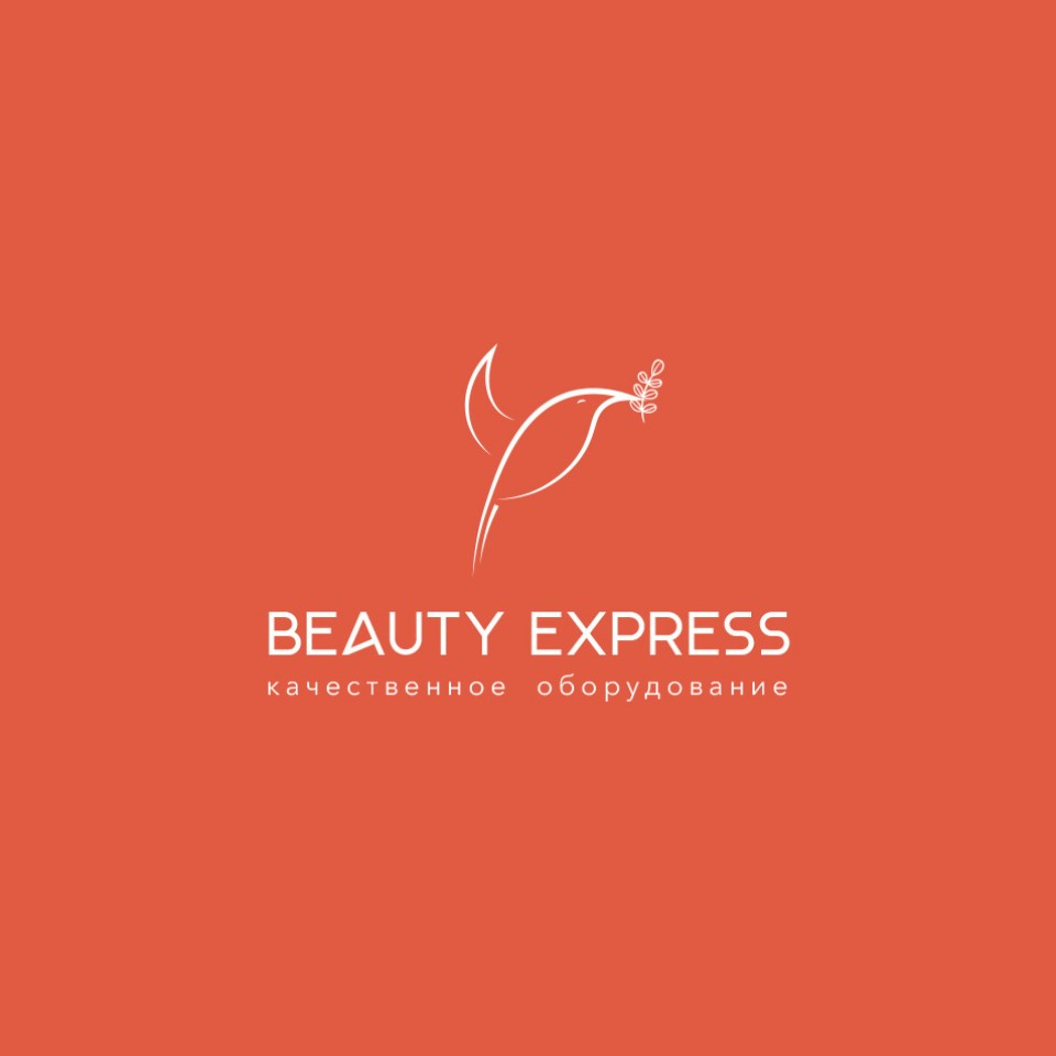 Разработка логотипа компании «Beauty Express Shop»
